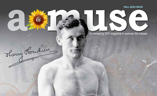 A_Muse-houdini-page-1_edited.jpg