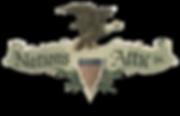 Nation's Attic Logo.png