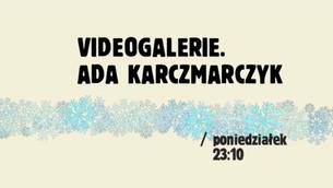 VIDEOGALERIE w TVP KULTURA