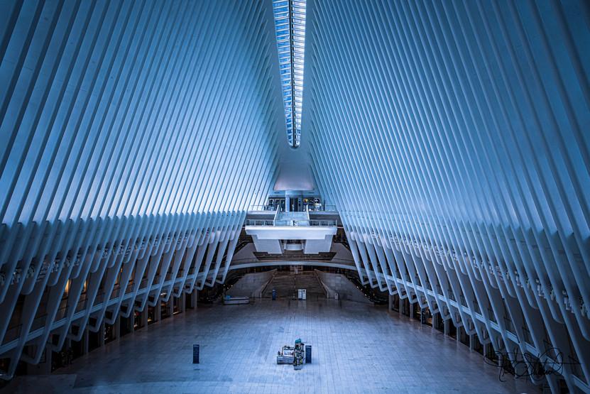 The Oculus NYC