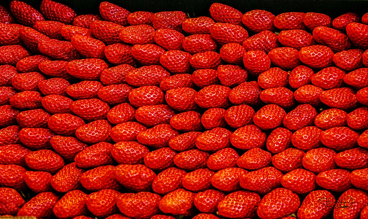 Strawberries - Paris