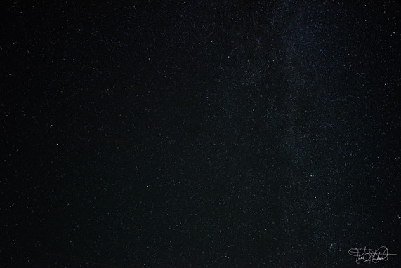 Billions and Billions of stars - from back porch