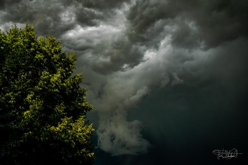Storm A Brewin' - 1st Place
