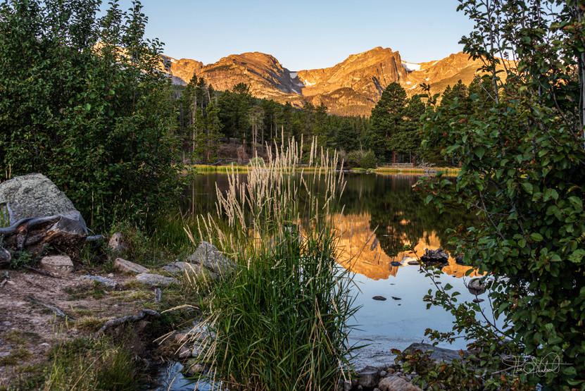Reflection - Sprague Lake