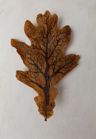 Tree on leaf 4