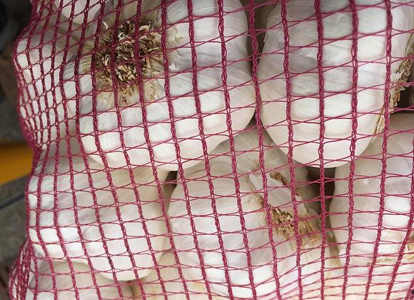 Fresh Garlic bulb price per bulb