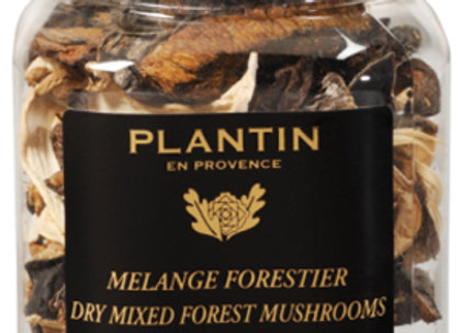 Grade A Dried Wild Forest Mushrooms per 50g