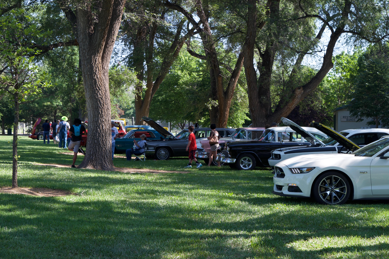 Jungle Run Car Show