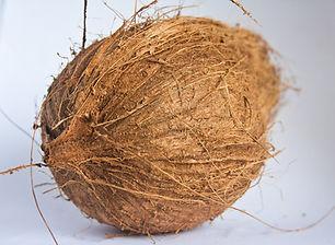 coconut-390056_1920.jpg