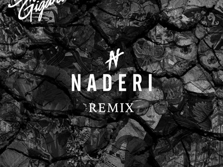 "Naderi's Remix of ""All Of Me"" Out Now!"