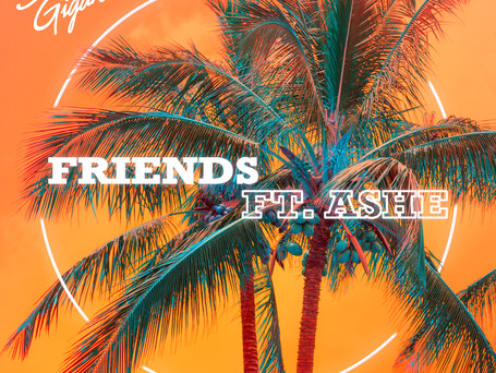 'Friends' Feat. Ashe - Out Now!
