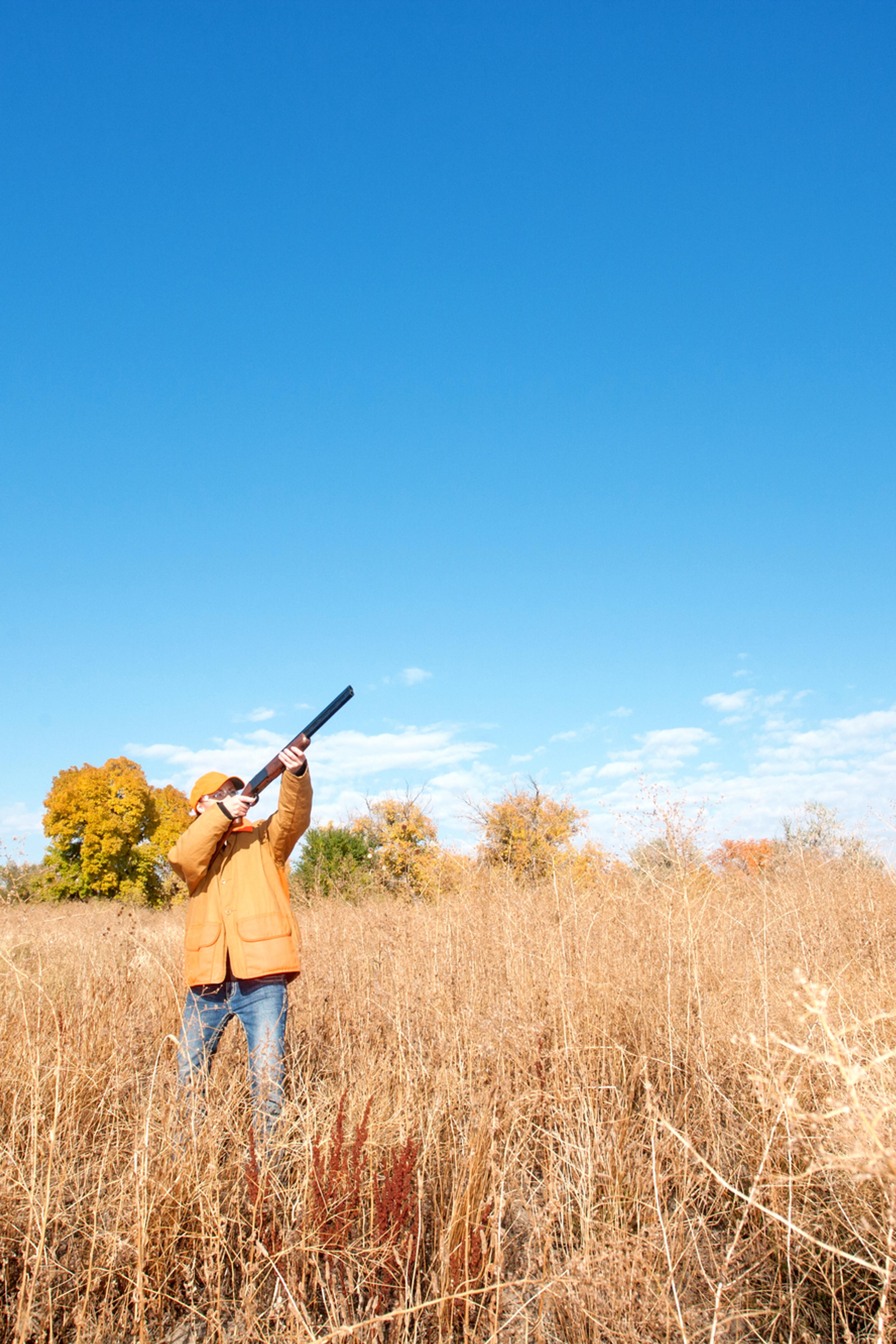 Whole Day Pheasant Hunt