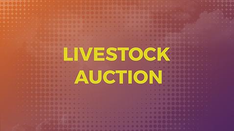 livestockauction.png
