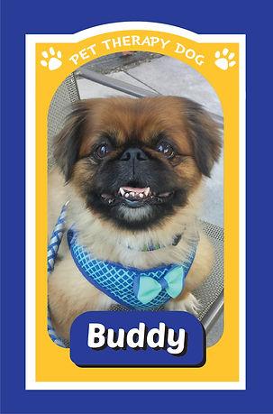 Buddy.jpg