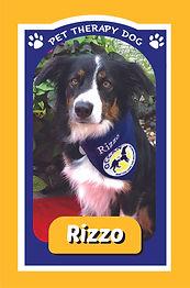 Rizzo.jpg