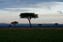 Stormy Maasai Country 5.jpg