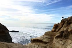San Diego Dec 2014 - 2.jpg