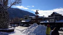 Seasonal Trips- Colorado and Wyoming
