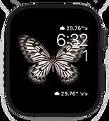 Watch- utilitarian.png
