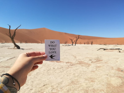 Sossusvlei, Namibia   April 2018   Lisa