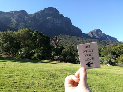 Kirstenbosch Botanical Gardens, Cape Town, South Africa   January 2018   Lisa