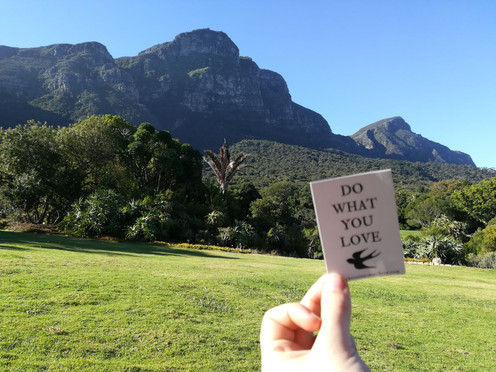 Kirstenbosch Botanical Gardens, Cape Town, South Africa | January 2018 | Lisa