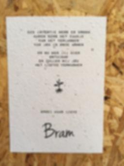 Geboorte kaartje Bram.jpg