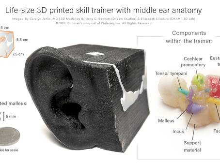 Training Surgical Residents with a 3D Printed Middle Ear
