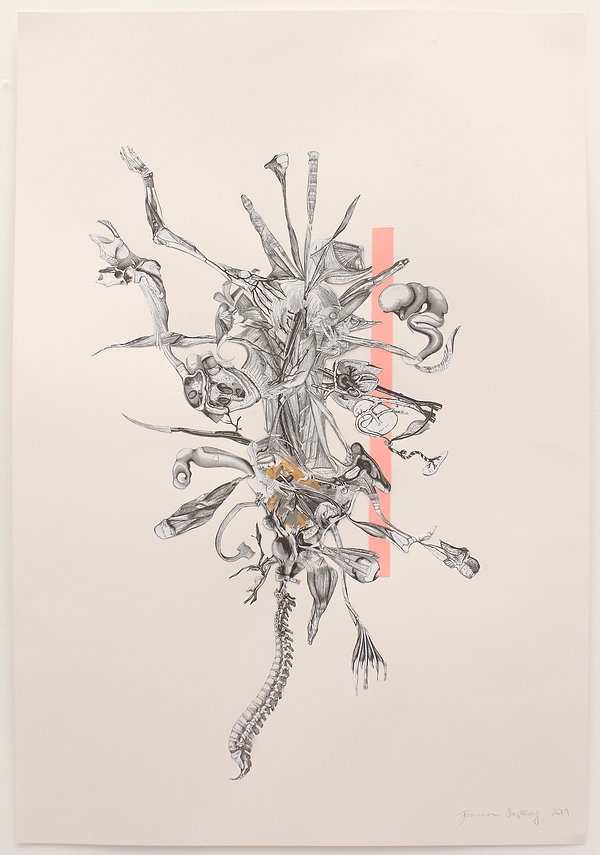 Gray and Pinks Anatomy_JoannaHopkins_75c