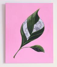 Leaf wiht male organs