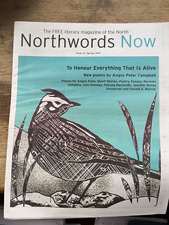 Northwords_Now_31.JPG