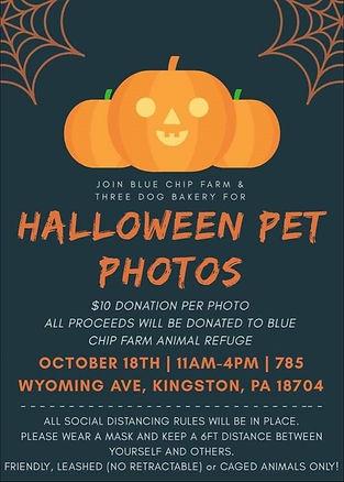 Halloween Pet Photos.jpg