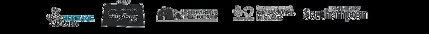 Logo strip (2).png