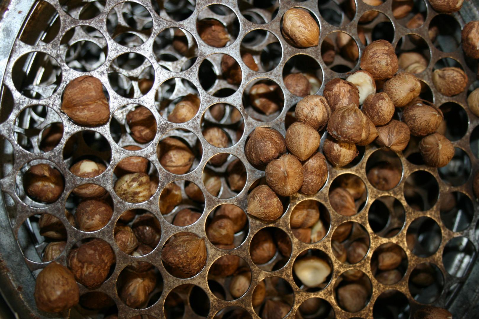 Calibrage des noisettes