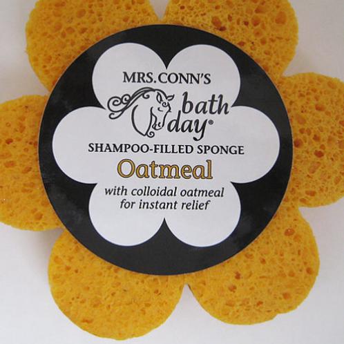 Mrs Conn's Oatmeal Sponge