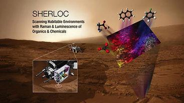 sherloc-cropped-500.jpg