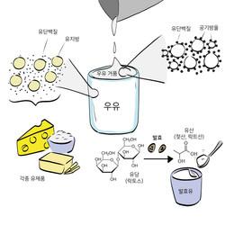4장_그림4