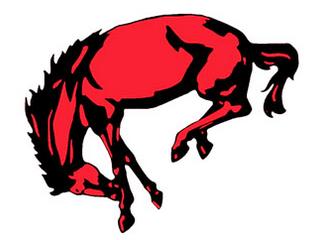 Boock Boosts Broncos Past Saxons