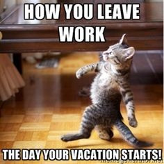 Vacation, yippee!