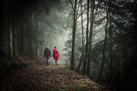 walking-1149747_1920.jpg