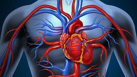 heartf.jpg