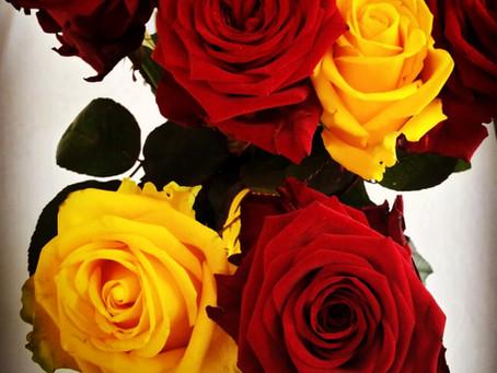 Obrazy z vašich květin - originální dekorace i vzpomínka