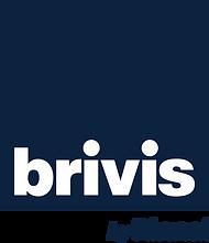 Brivis by Rinnai CMYK Pantone 289C Box.p