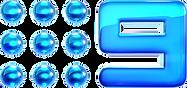Nine2012_Glossed_Logo.png