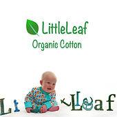 Littleleaf-Organic-Cotton.jpg