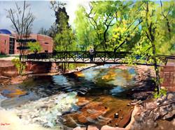 Pondering Boulder Creek
