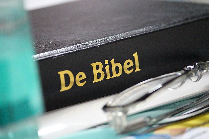 Low German Bible_EDITED.jpg