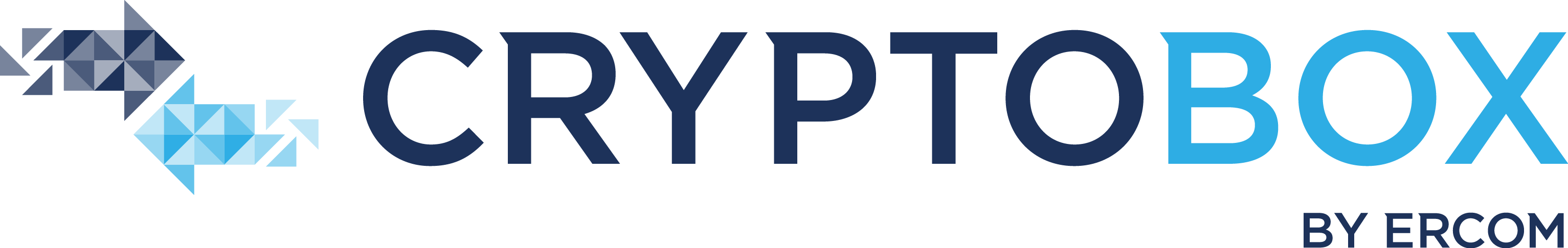 LOGO_Cryptobox_RVB