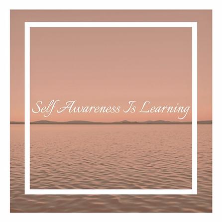 Self Awareness 2.png