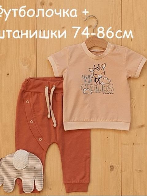 К88/00Ф4-00Б6к/л  Комплект